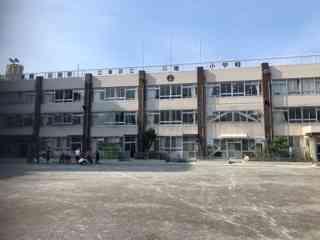 1_5月末以来の校庭.JPG
